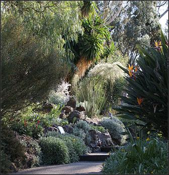 Royal+Botanic+Gardens+melbourne